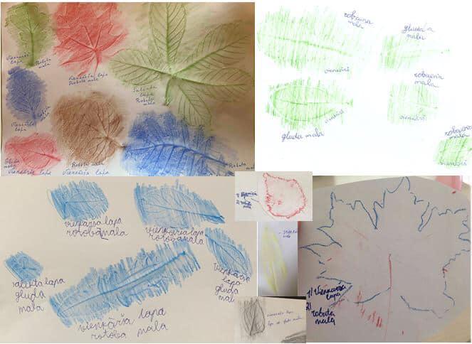 4.klase attālināto mācību laikā, dabaszinību stundas ietvaros, apgūst lapu daudzveidību – tās veidus